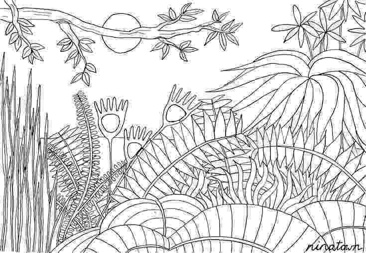 henri rousseau coloring pages 38 best jungle images on pinterest henri rousseau art rousseau henri coloring pages