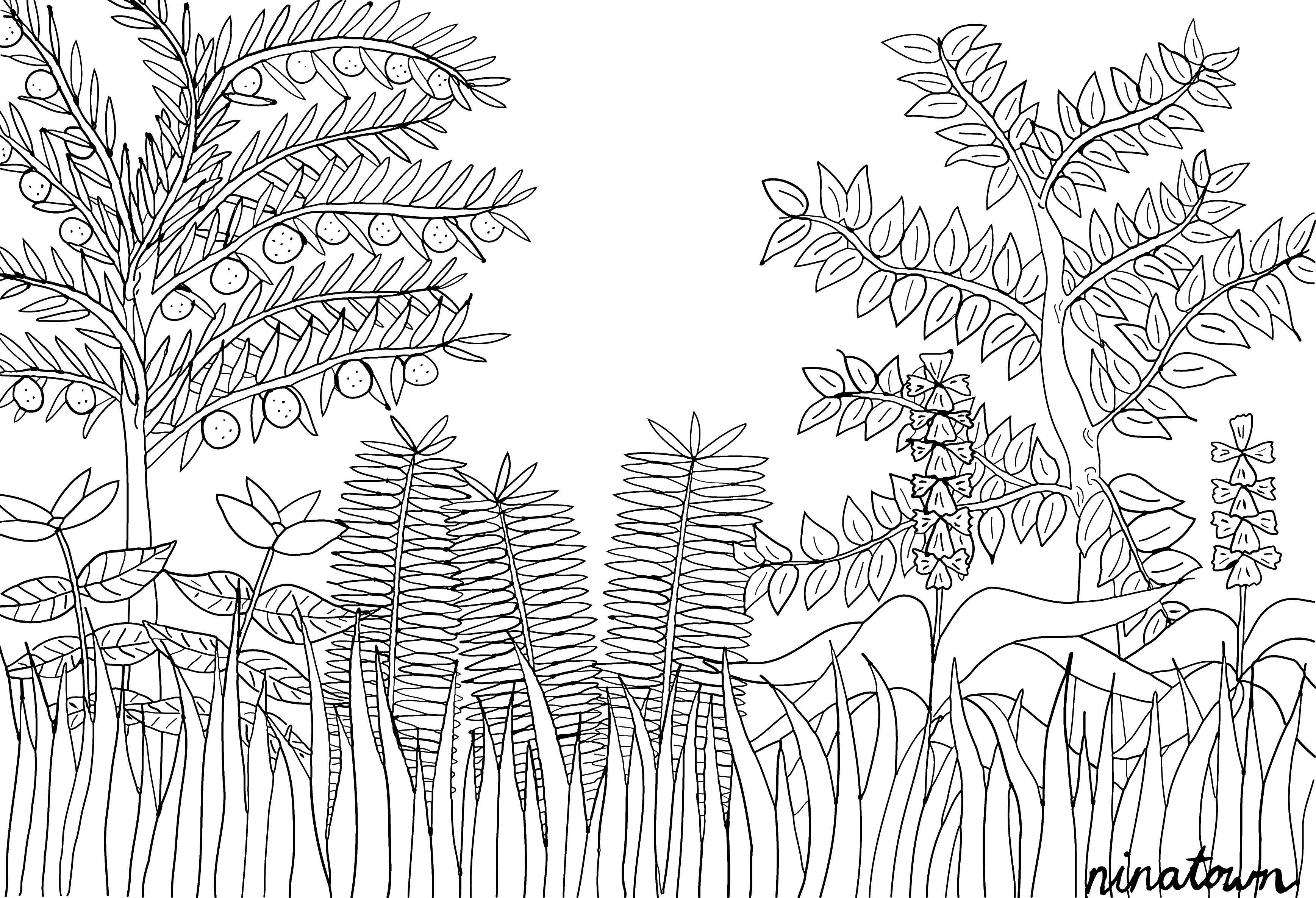 henri rousseau coloring pages pin by deborah fleet on rainforest classroom in 2019 art coloring pages rousseau henri
