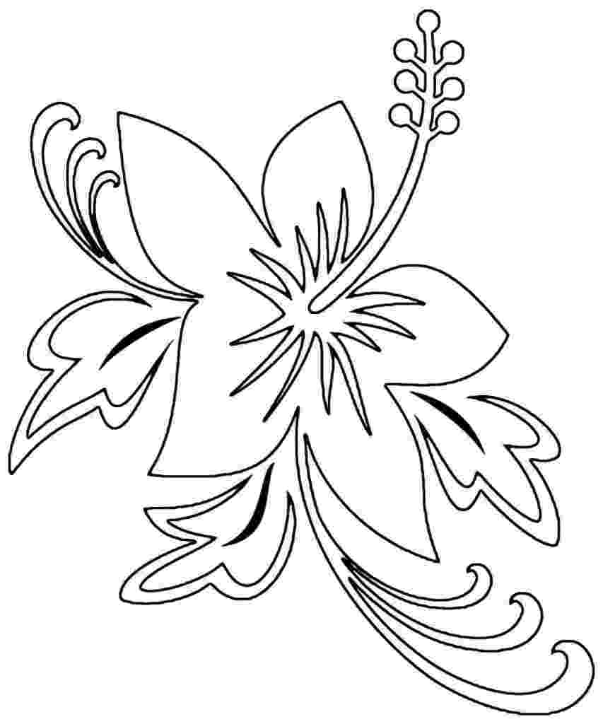 hibiscus coloring pages hibiscus flower coloring page woo jr kids activities coloring hibiscus pages
