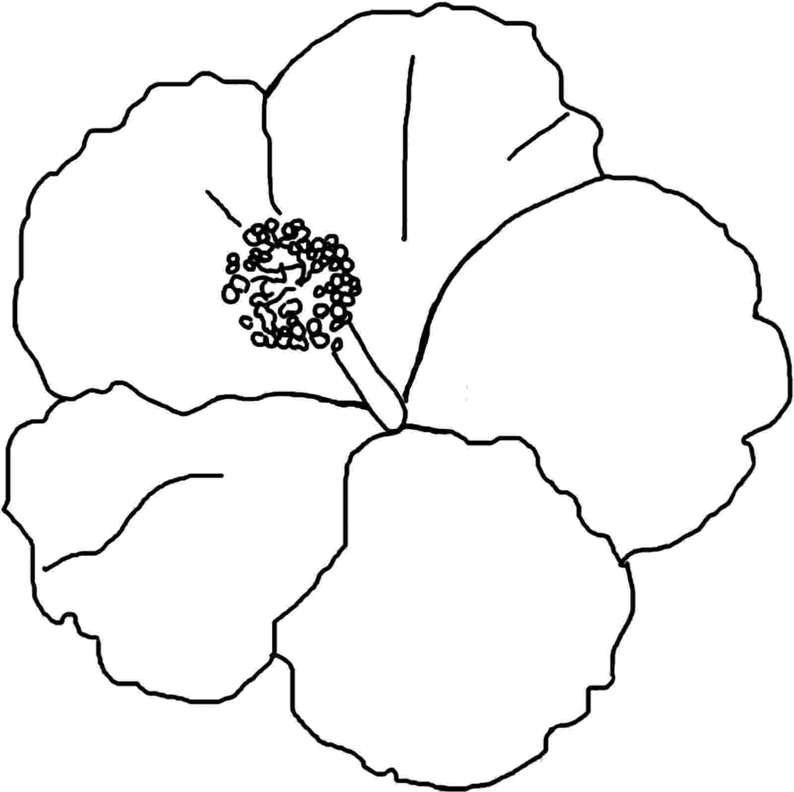 hibiscus coloring pages hibiscus flower in bloom coloring page color luna pages coloring hibiscus