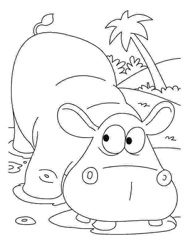 hippopotamus coloring page scared hippopotamus coloring pages download free scared hippopotamus coloring page