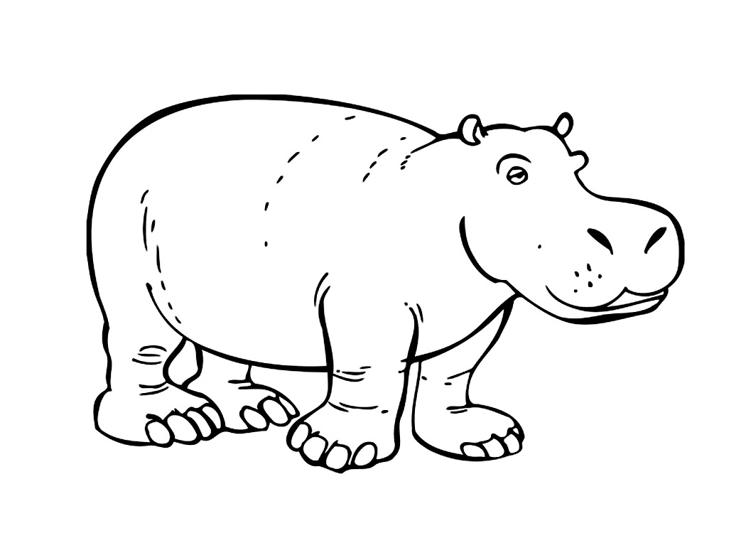 hippopotamus coloring pages printable hippo coloring pages for kids cool2bkids coloring hippopotamus pages