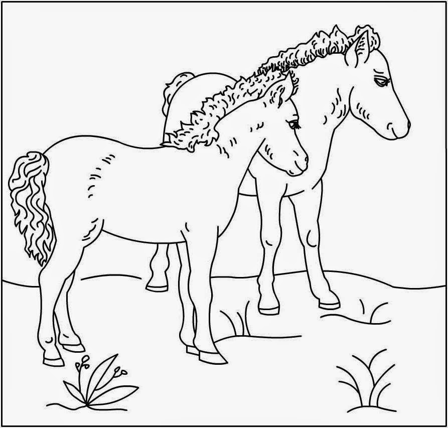 horse color sheets great horse coloring pages online new coloring pages color horse sheets