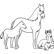 horse color sheets horse coloring pages only coloring pages horse color sheets