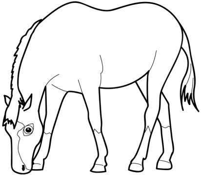 horse pictures coloring pages cartoon horse coloring pages cartoon coloring pages coloring pictures horse pages