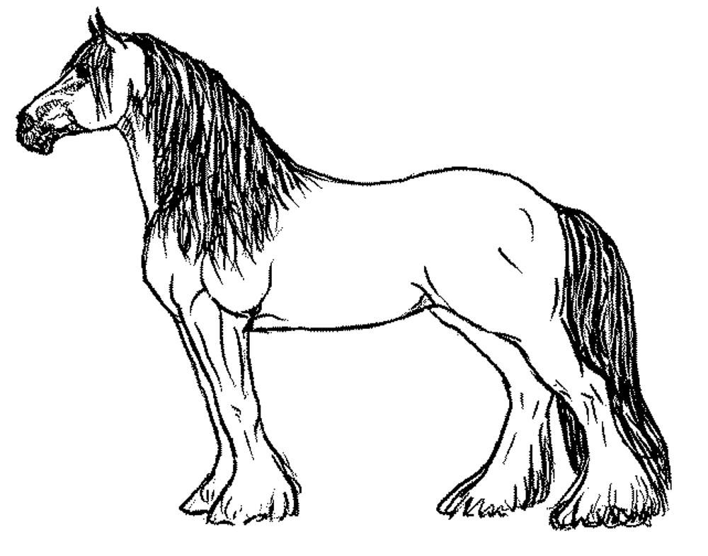 horse pictures coloring pages horse coloring pages for kids coloring pages for kids coloring pictures horse pages 1 1