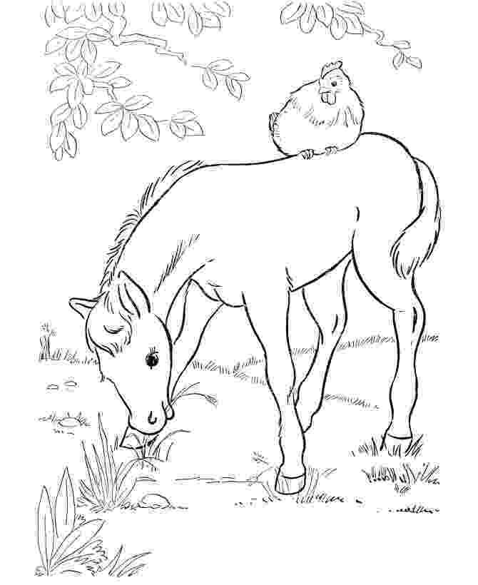 horse print out 42 besten horses bilder auf pinterest pferde malbücher print out horse