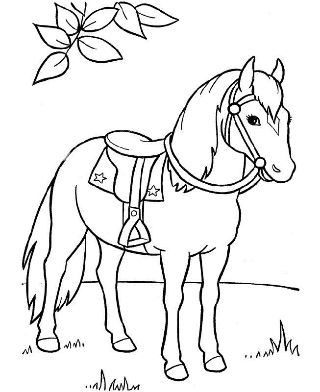 horse print out coloring pages 40 free printable coloring pages of horses free printable pages horse out print coloring