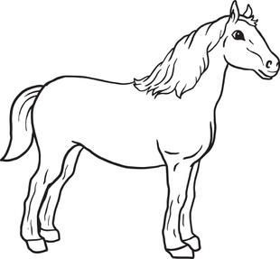 horse print out coloring pages horses a cute horse running in the farm coloring page pages horse coloring print out