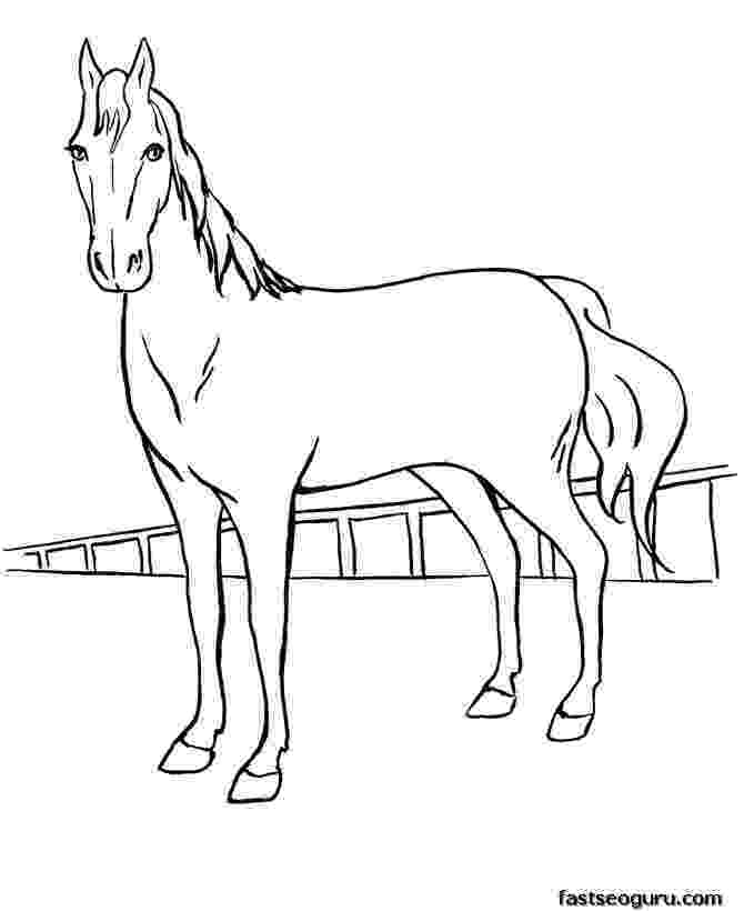 horse print out horse outline template clipart best out print horse