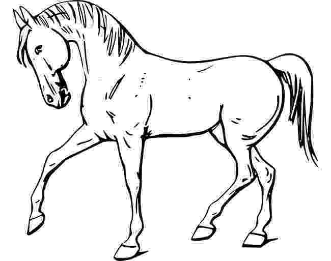 horse print out horse template animal templates free premium templates out print horse
