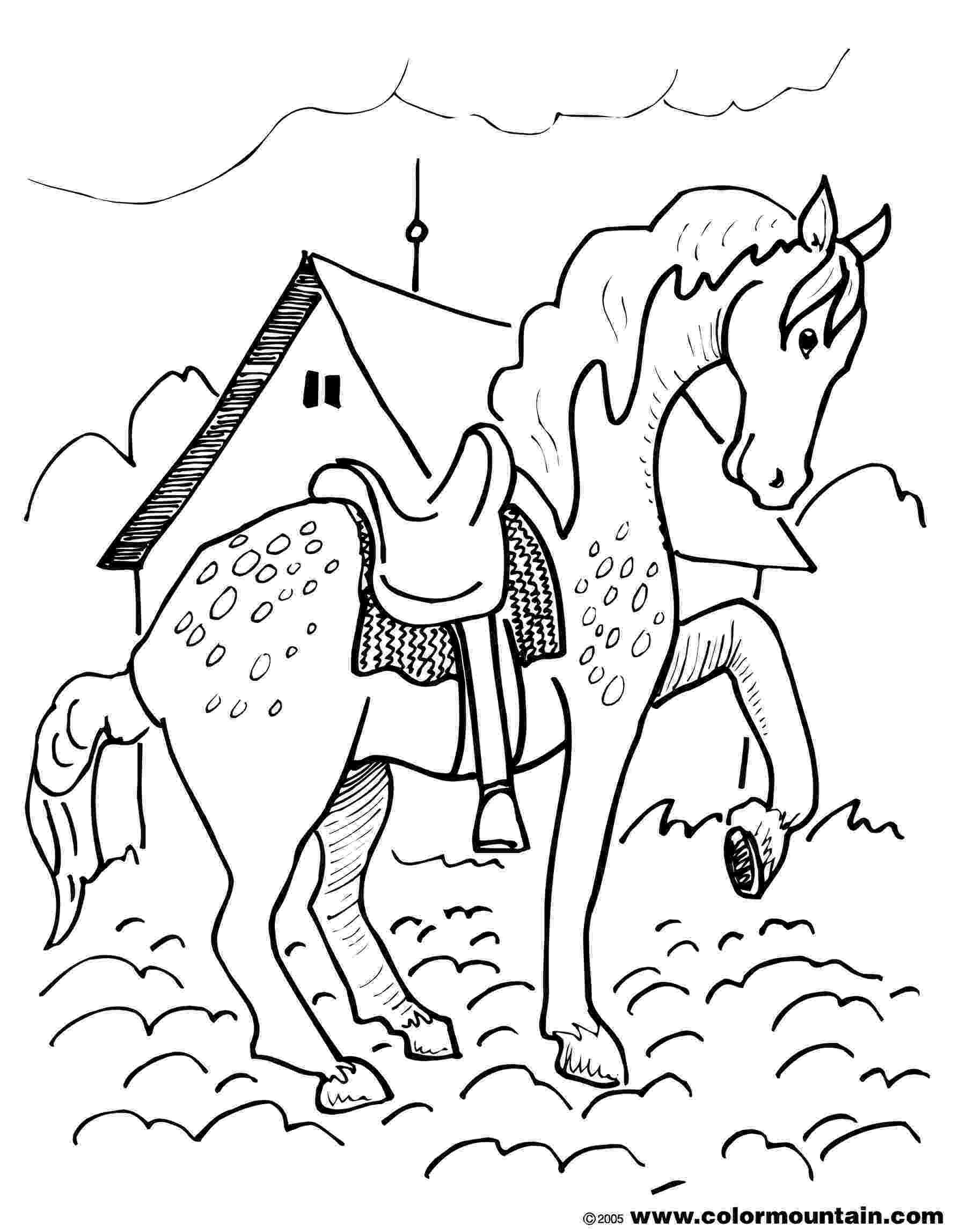 horse print out out horse print out horse print