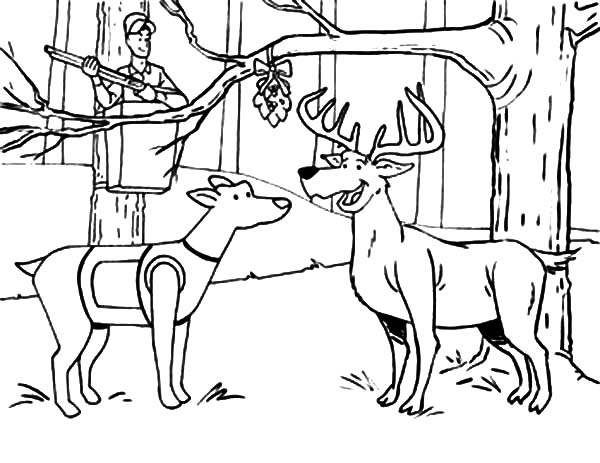 hunting coloring pages hunting deer and a dog under the mistletoe coloring pages pages hunting coloring