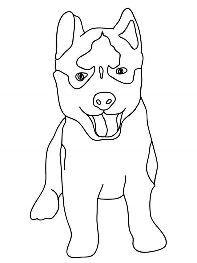 husky coloring pages alaskan husky dog graphic sticker personalize on line coloring husky pages