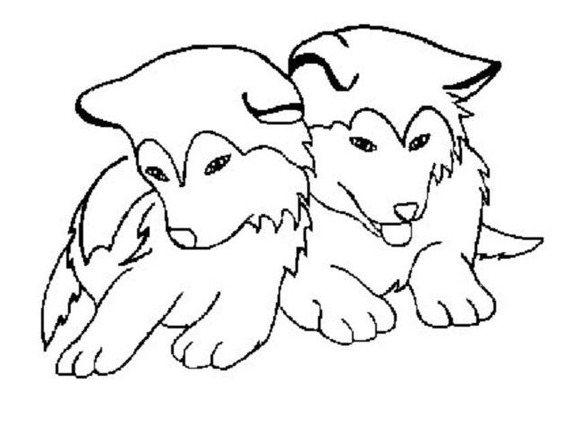 husky coloring pages husky coloring pages coloring page dog coloring page husky coloring pages