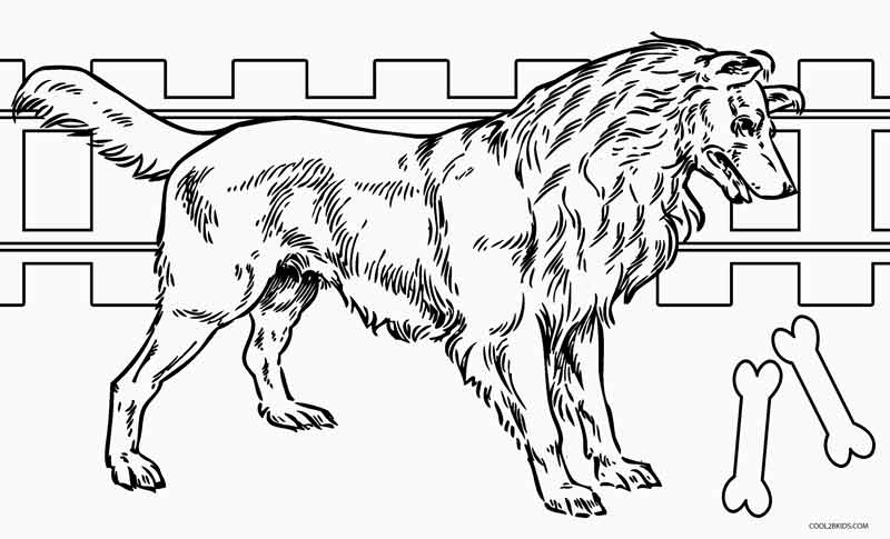 husky coloring pages printable dog coloring pages for kids cool2bkids husky pages coloring