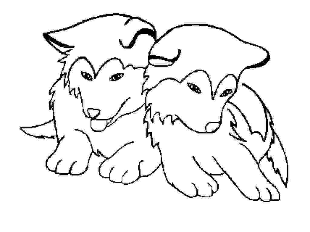 husky pictures to print husky coloring page free printable coloring pages pictures print to husky
