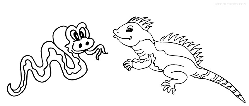 iguana coloring pages gentle iguana coloring page download print online coloring iguana pages