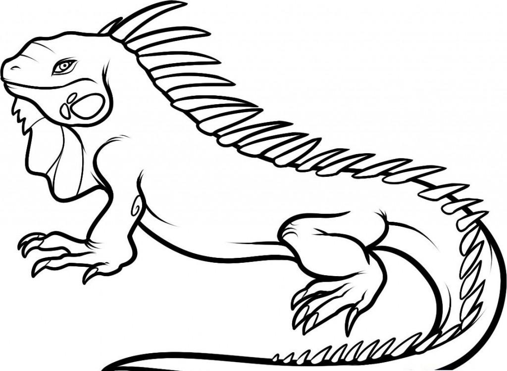 iguana coloring pages iguana cartoon coloring book stock vector izakowski coloring iguana pages