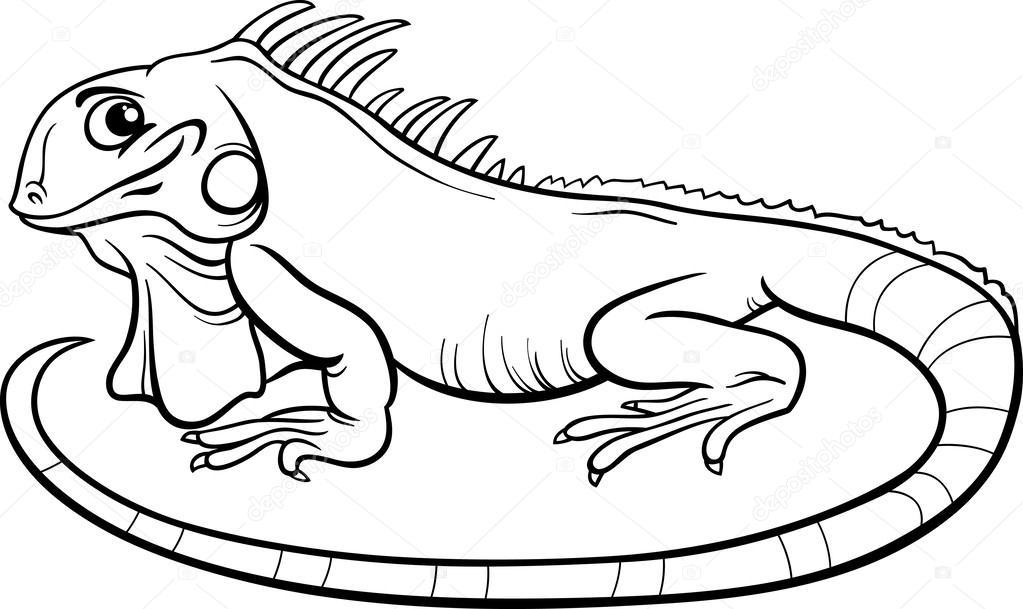 iguana coloring pages iguana coloring pages getcoloringpagescom pages iguana coloring