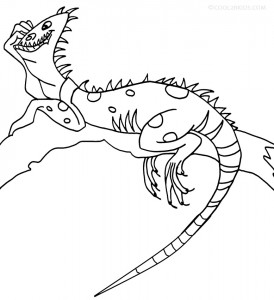 iguana coloring pages iguana coloring pages to download and print for free iguana coloring pages