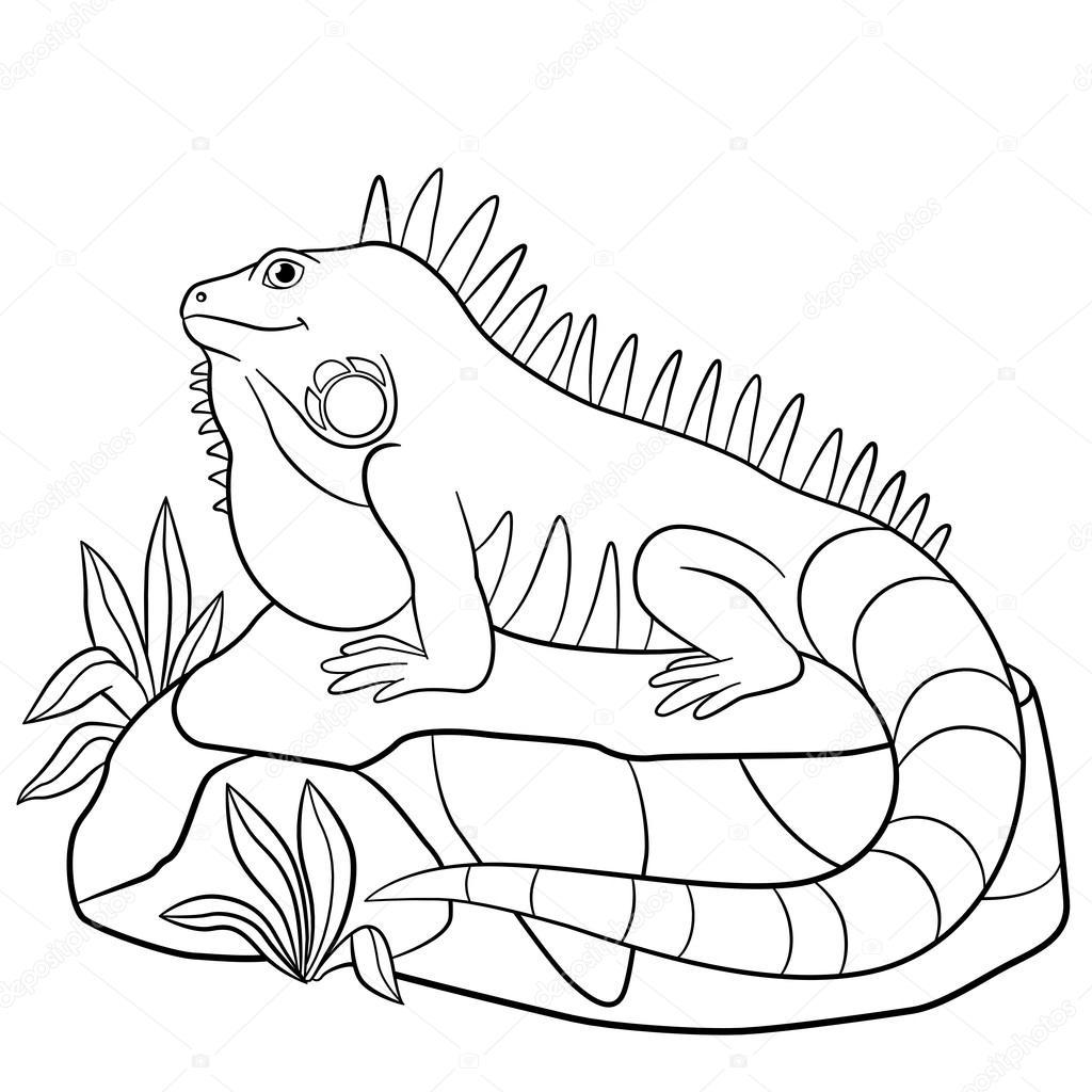 iguana coloring pages printable iguana coloring pages for kids cool2bkids pages coloring iguana