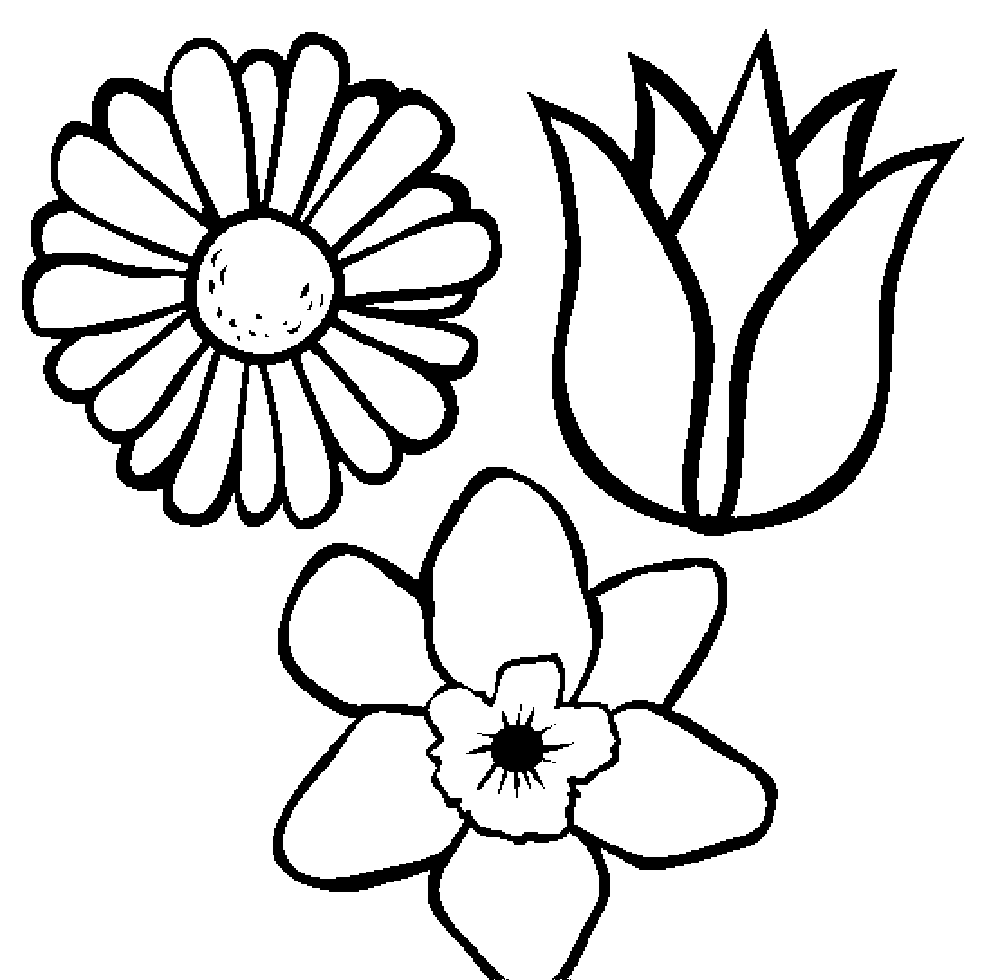 images of flowers to color coloring pages flower pot coloring page printable kids color of images to flowers