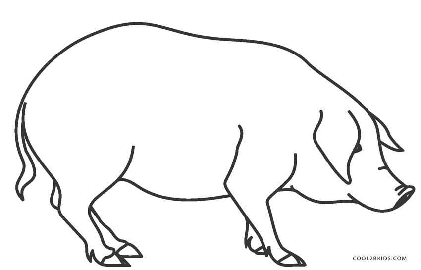 images of pigs to color coloring picture of animals for kids pigs of images color to