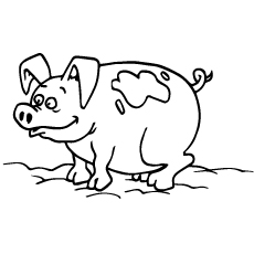 images of pigs to color pig coloring page twisty noodle of pigs color to images