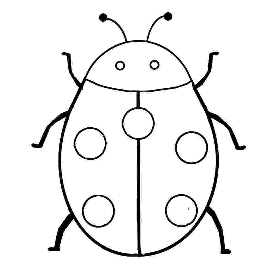insect colouring page insect coloring pages best coloring pages for kids insect page colouring