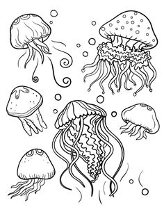 jellyfish coloring pictures jellyfish coloring pages getcoloringpagescom pictures jellyfish coloring