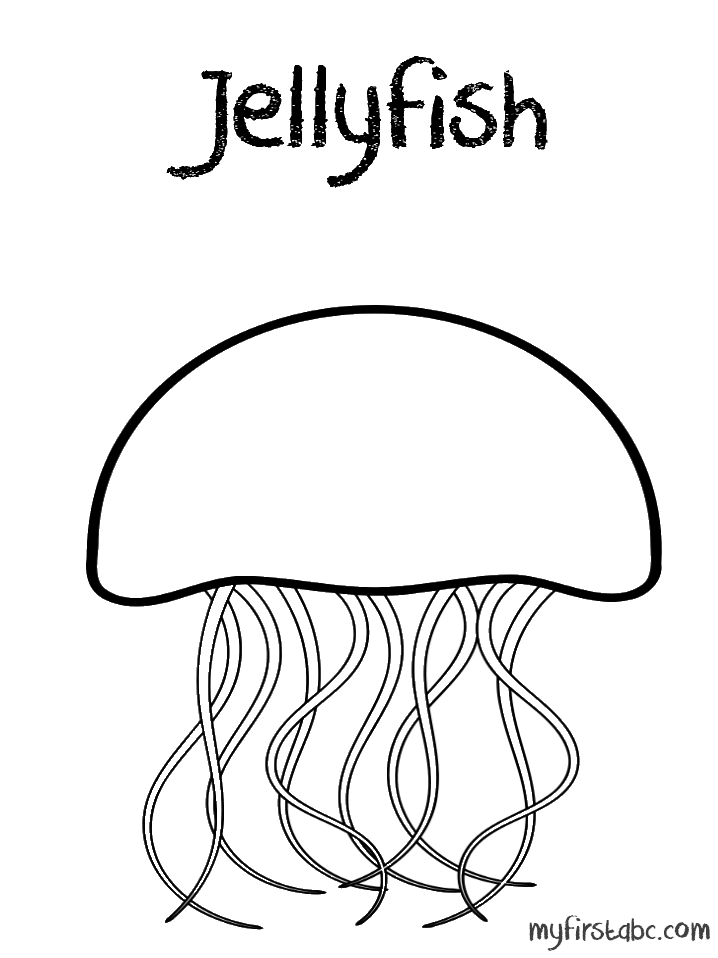 jellyfish for coloring happy fish has jellyfish as a friend coloring page jellyfish for coloring