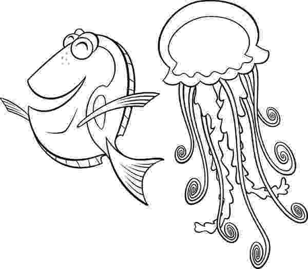 jellyfish for coloring jellyfish free printable coloring pages coloring jellyfish for