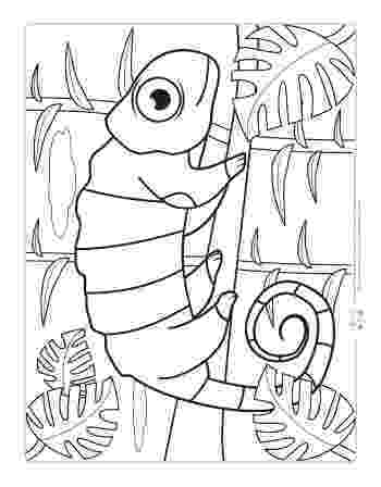 jungle animal coloring pages awesome baby jungle free animal coloring page coloring jungle pages animal