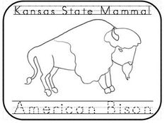 kansas state symbols coloring pages sunflower coloring page state kansas symbols pages coloring