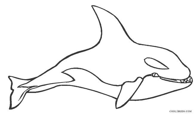 killer whale coloring page beautiful killer whale coloring page free printable coloring whale page killer