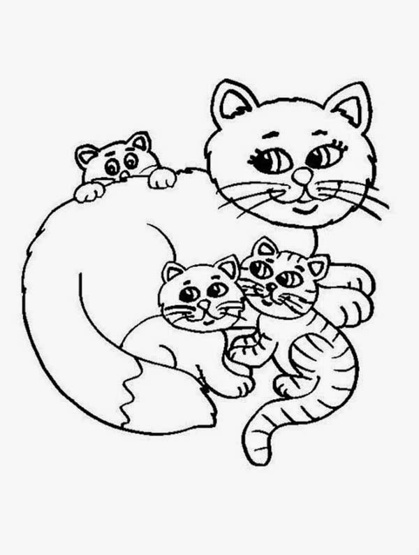 kitten color page kittens coloring pages minister coloring kitten page color