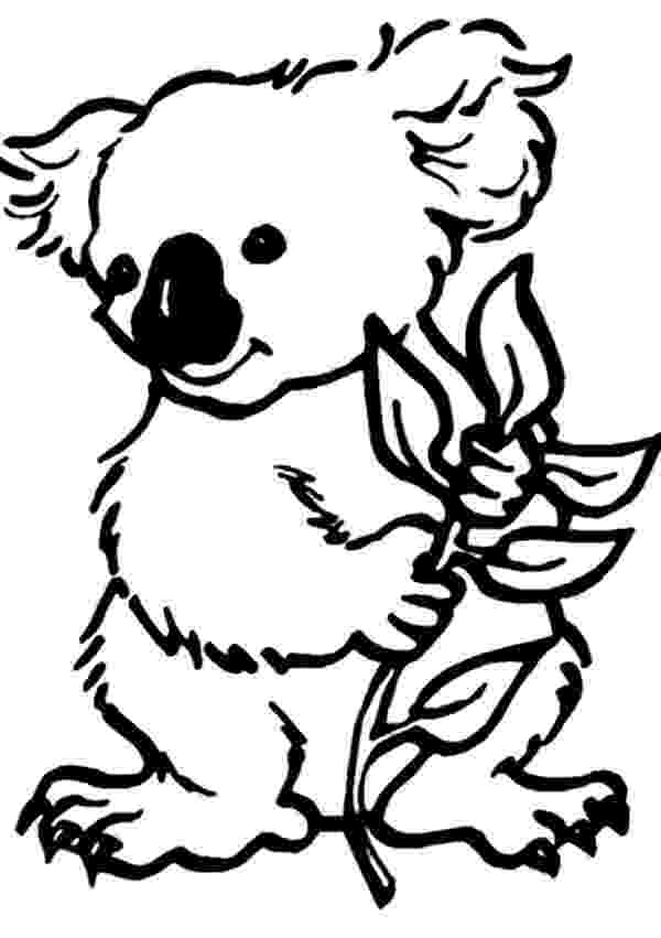 koala color 70 best most loved activity pins for kids images on koala color