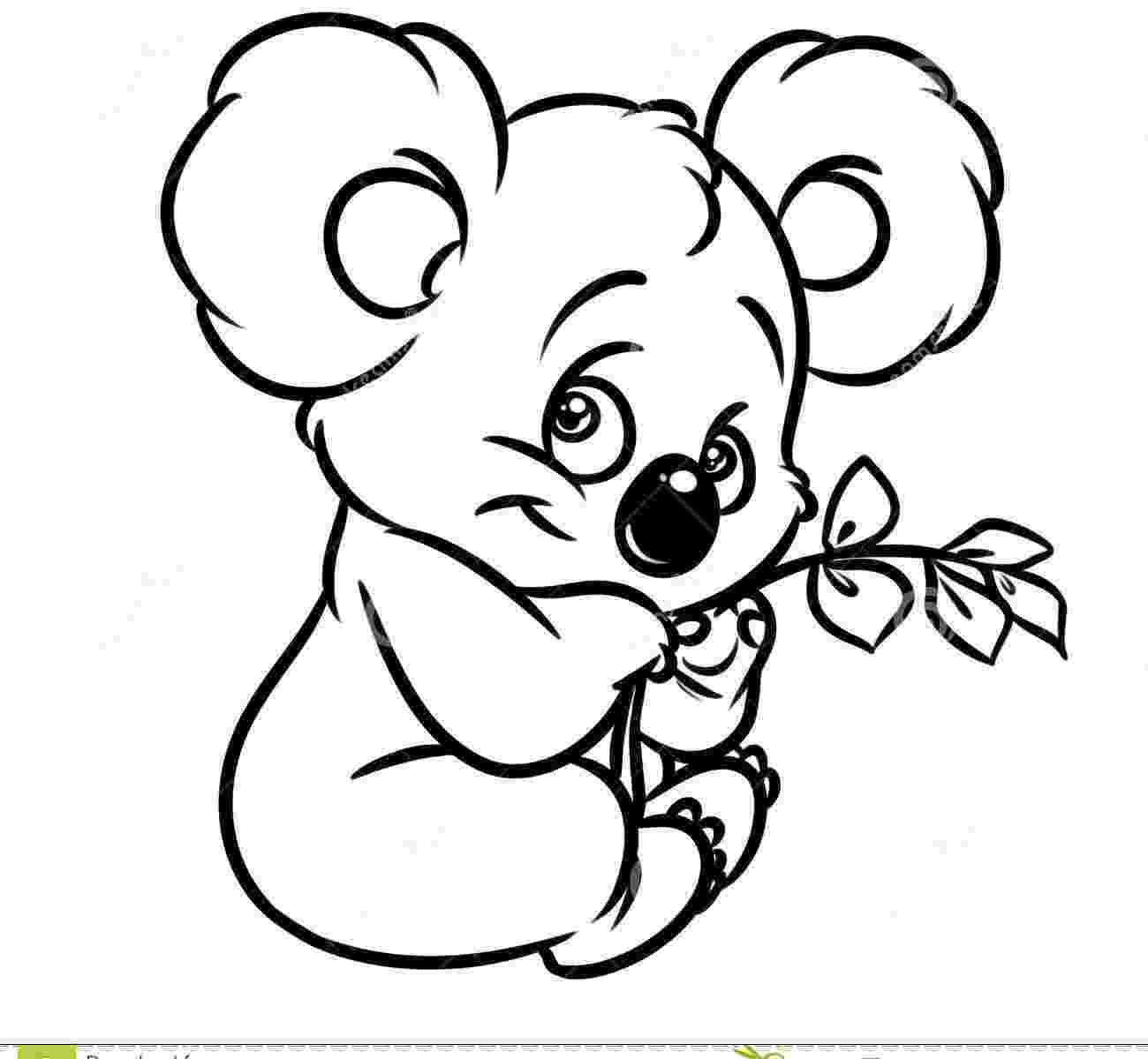 koala color australian animal colouring pages color koala