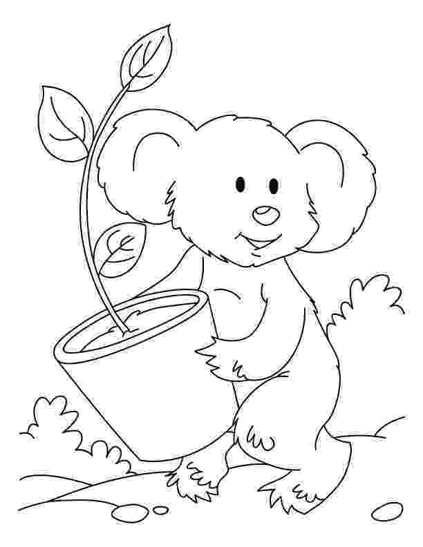 koala color free printable koala coloring pages for kids color koala 1 1