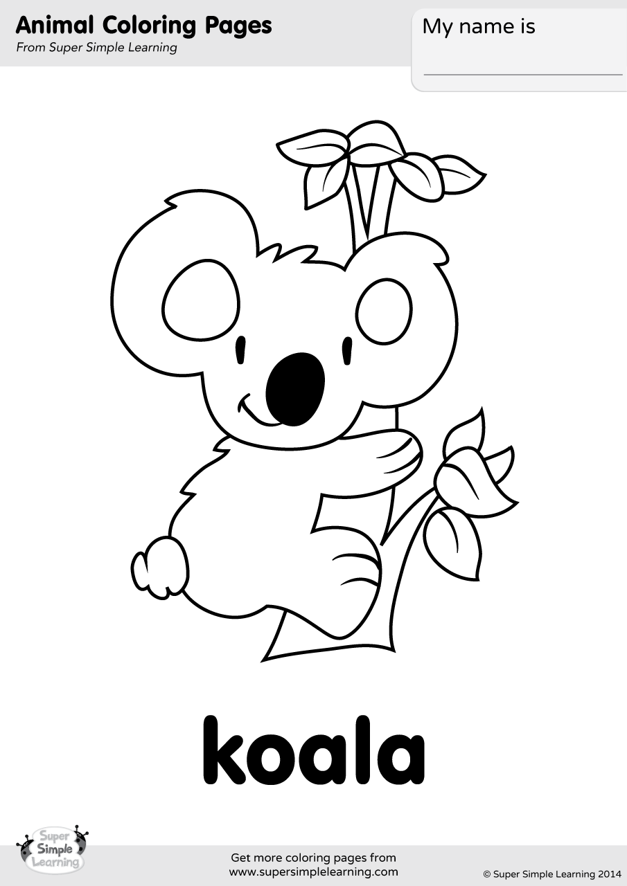 koala color koala bear coloring page color luna koala color