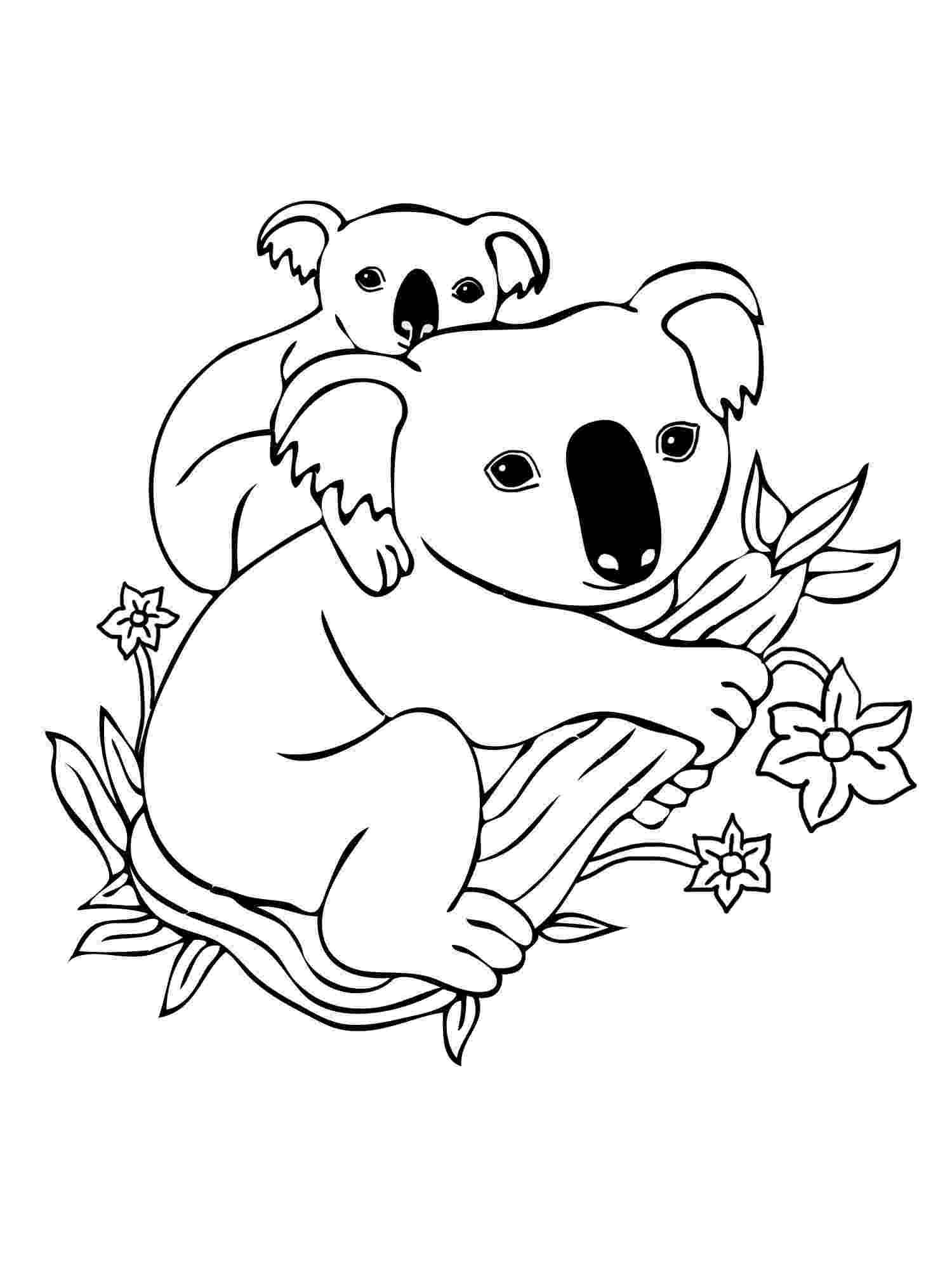 koala color koala coloring page super simple koala color