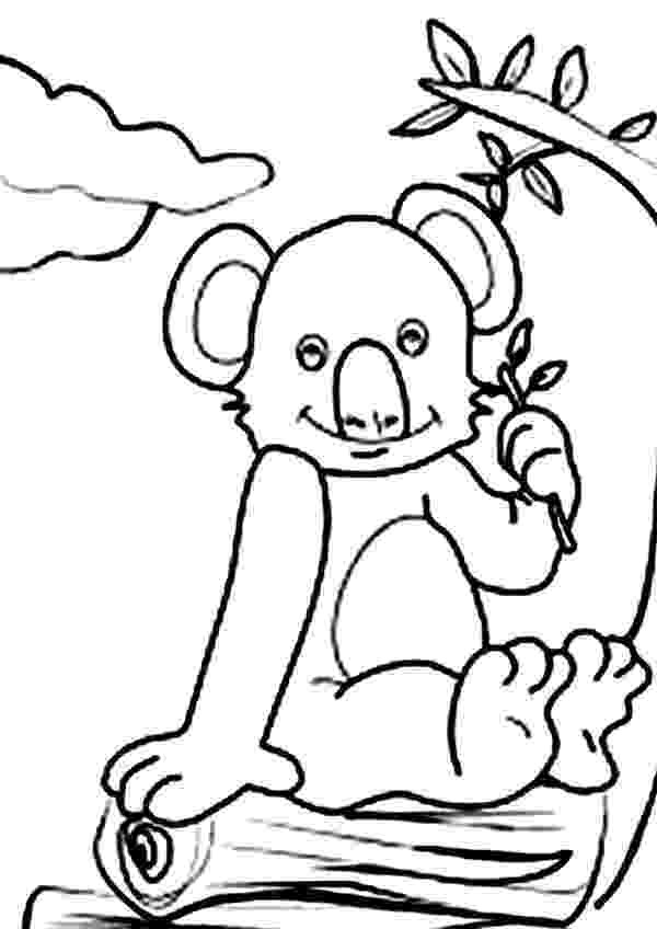 koala color koala eucalyptus leaves coloring page stock illustration color koala