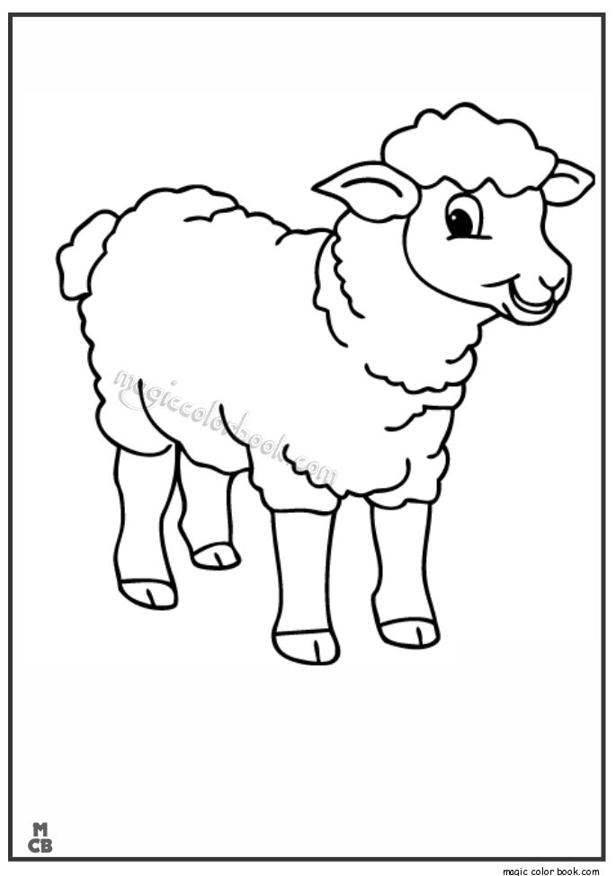 lamb pictures to color انشطة لخروف العيد مـدونـة جـنـة الاطــفـال color pictures lamb to