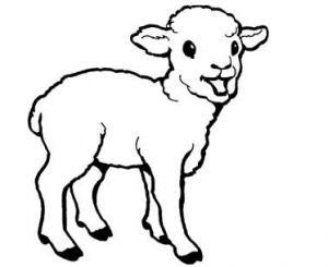 lamb pictures to color 75 best images about animals coloring pages on pinterest pictures to lamb color