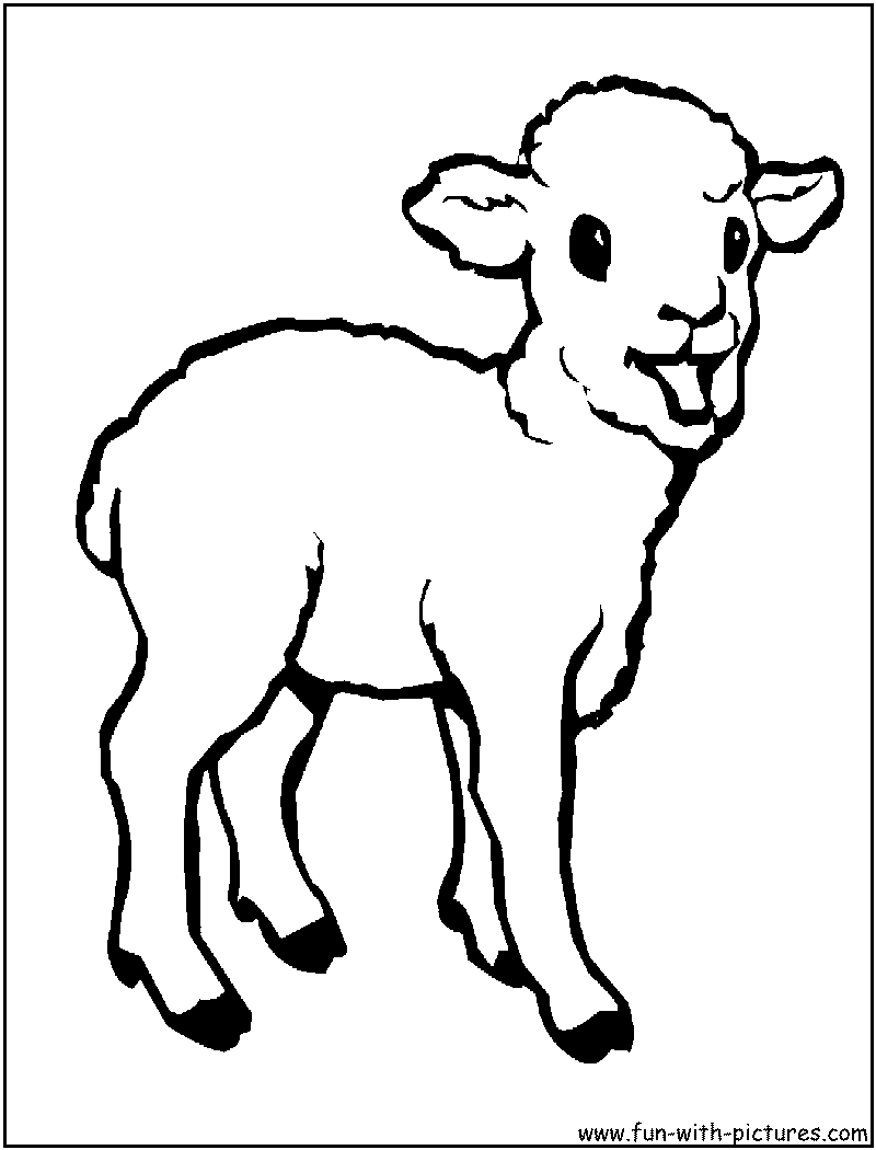 lamb pictures to color cute animal sheeps coloring pages pictures to color lamb