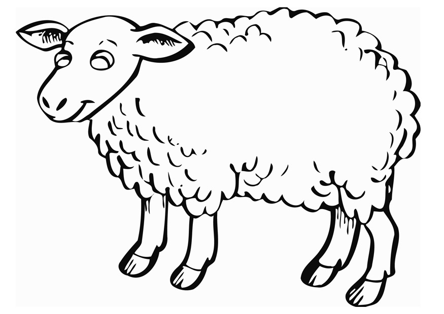 lamb pictures to color cute lamb laughing coloring page coloring sky color to pictures lamb
