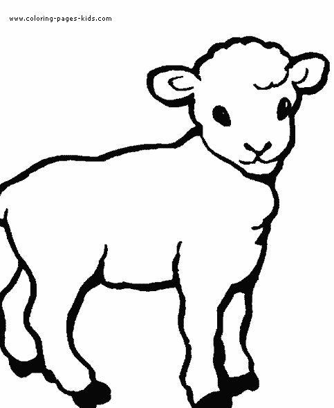 lamb pictures to color sheep coloring pages for preschool free coloring page for pictures to lamb color