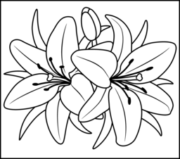 lily flower coloring pages flowers coloring pages flower lily pages coloring