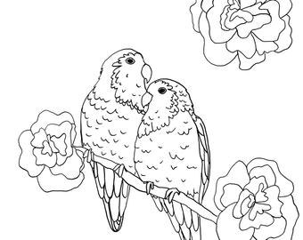 love birds coloring pages 17 best images about digi valentines on pinterest pages love birds coloring